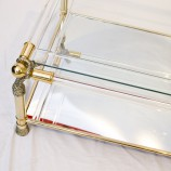 51_Gold Glass and Lucite Coffee Table_01